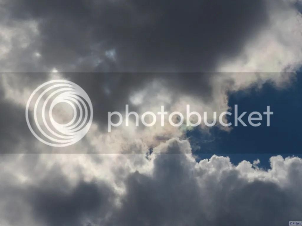 photo P2680607.jpg