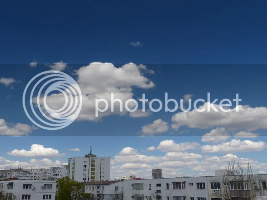 photo P2690012.jpg