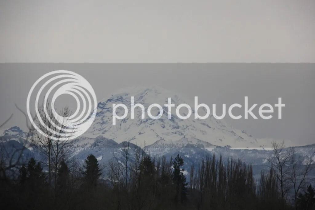 photo 14 December - snow 1_zpsofkloer3.jpg