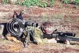 Shepherd watch