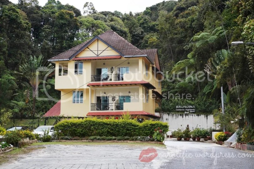 Arundina, Guest House, Cameron Highlands, Travel, Malaysia, Where to Stay, Hotel, Backpacker, Cheap, Nice Hotel, Great Hotel, Diplomat's Wife, Review