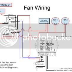 Radiator Fan Relay Wiring Diagram Heart Unlabeled Derale Great Installation Of Todays Rh 18 5 9 1813weddingbarn Com Electric