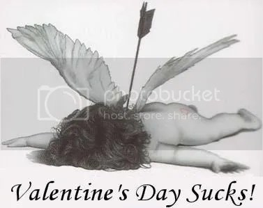 I had a great Valentines day even though I partially agree with this picture...