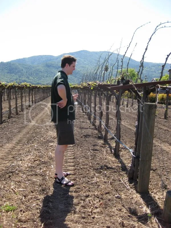 Matt contemplates the vines.