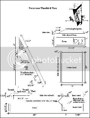 Wood Work Peterson Bluebird House Plans PDF Plans