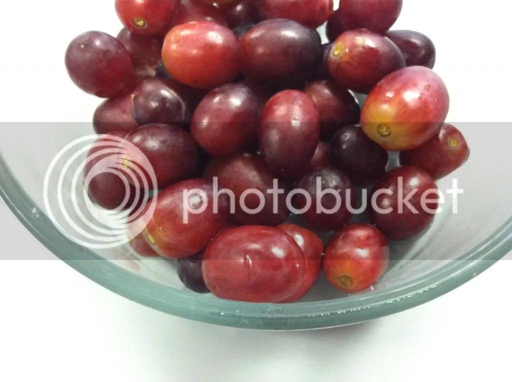 photo Grapes002_zps42a82c32.jpg