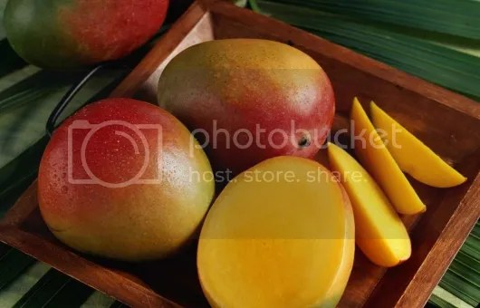photo Mangoes_zpsa9d313e2.jpg
