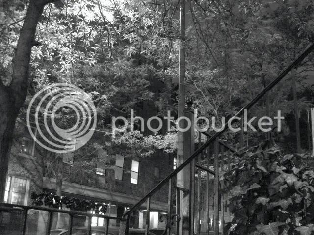stoop on E. 3rd Street, NYC