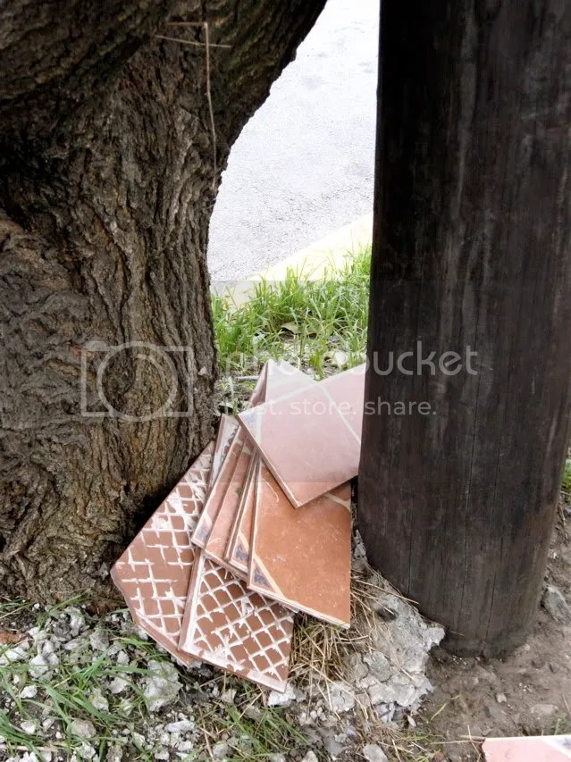 floor tiles dumped by a tree