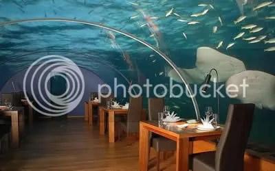 Restaurant bawah laut (MALDIVES)