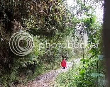 Camino del Inca. El trekking más famoso del mundo.