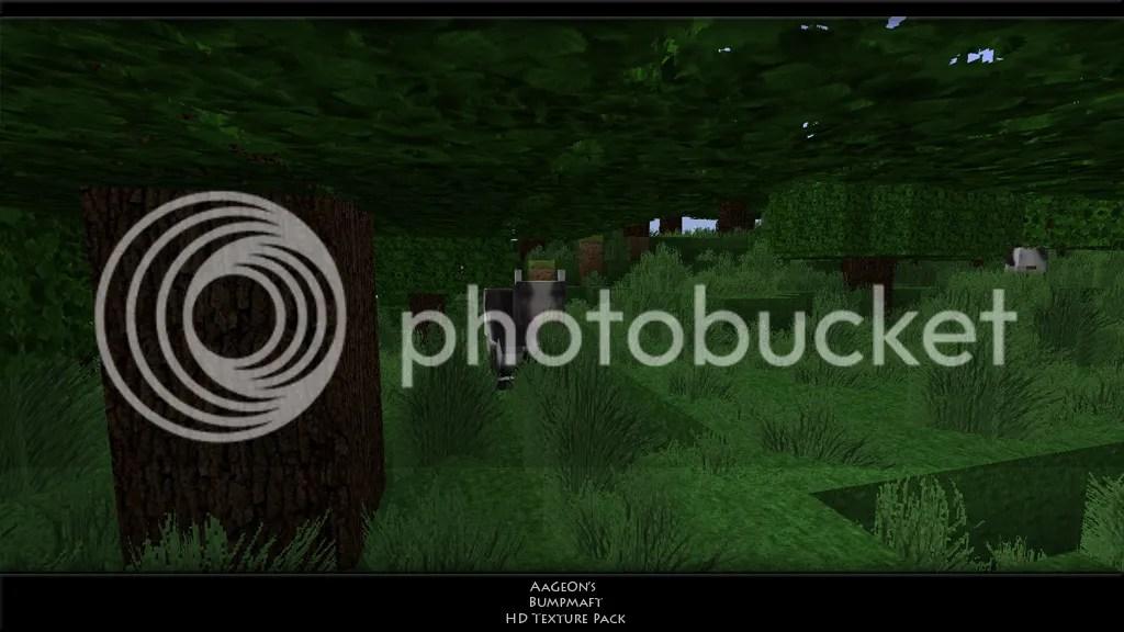 https://i0.wp.com/i148.photobucket.com/albums/s5/AaGeOn/grass151.png