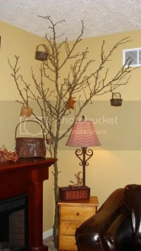 ~Real Tree Branch In Living Room~ Photo by OldeGlory ...