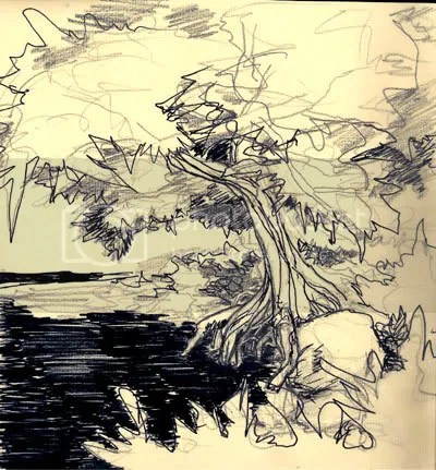 Pen & ink tree and pond