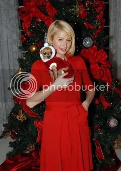 christmascards6.jpg image by shopbook