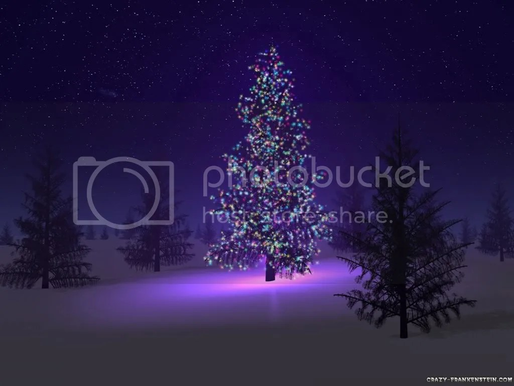 beautiful-christmas-tree.jpg picture by romantik1109