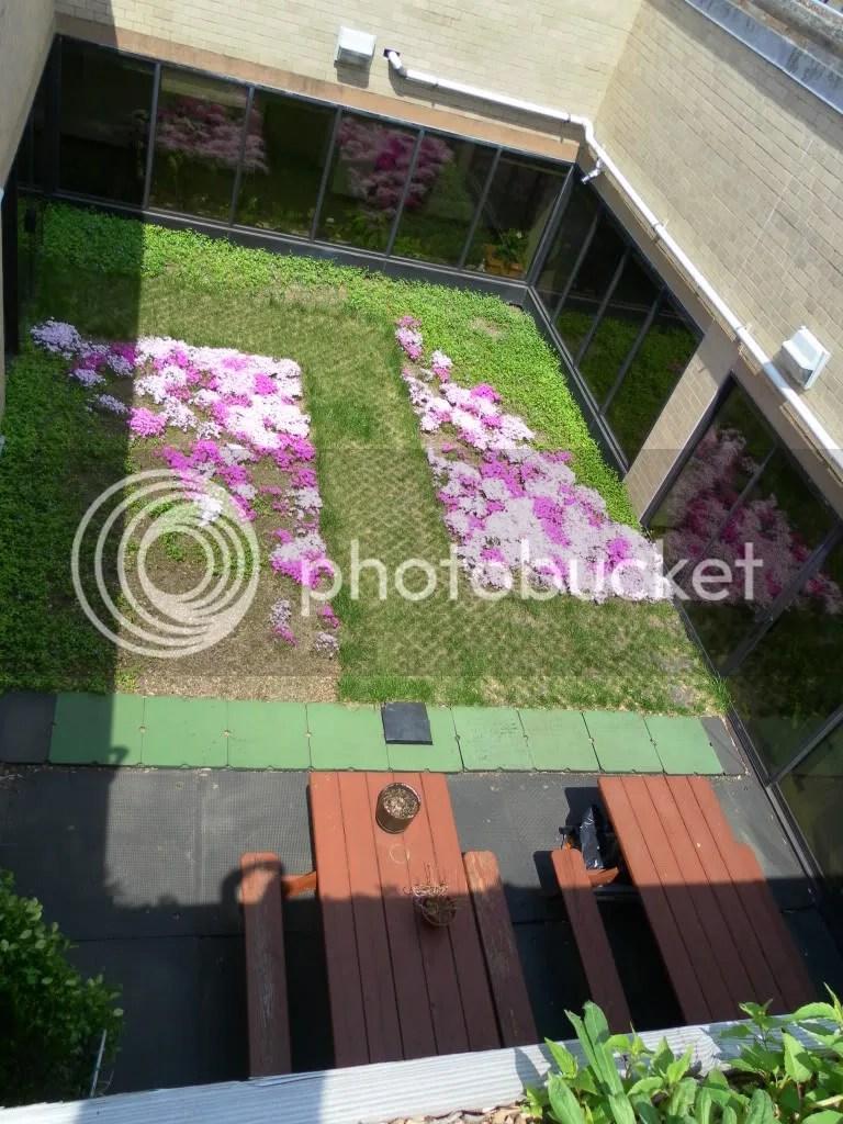 5-Boro Courtyard Garden