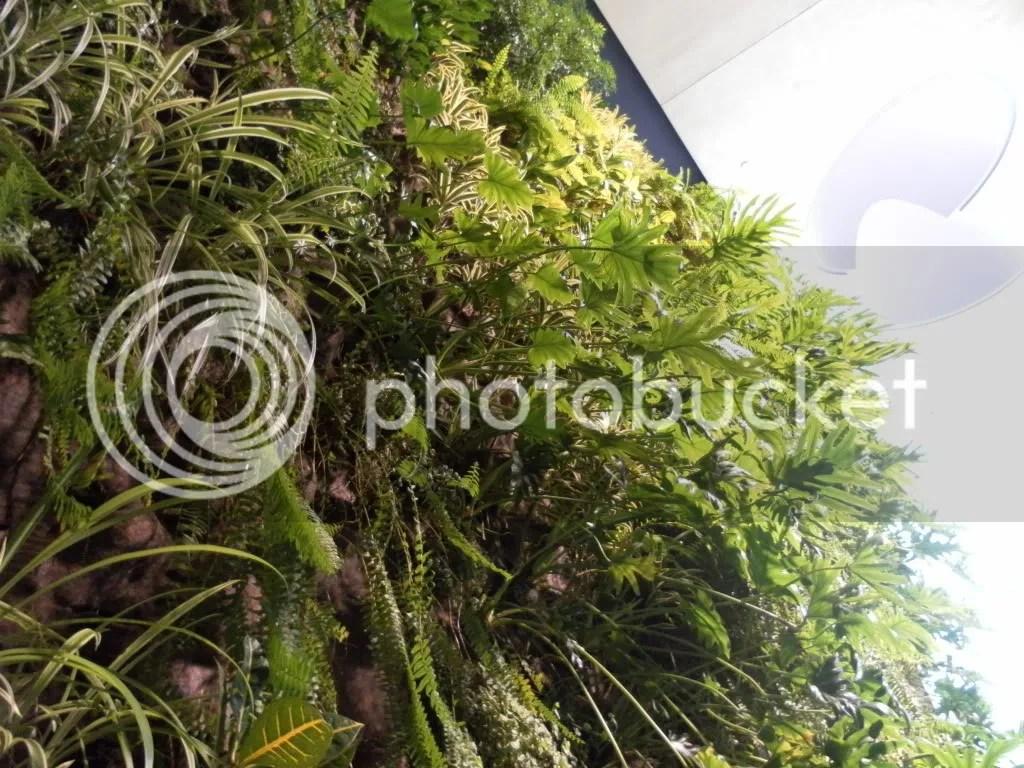 David Rubenstein Atrium wall