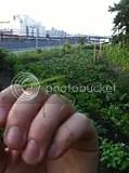 July 09 2011_06