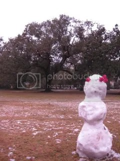 audubon park snow man