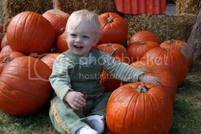 Gratuitously cute pumpkin patch picture