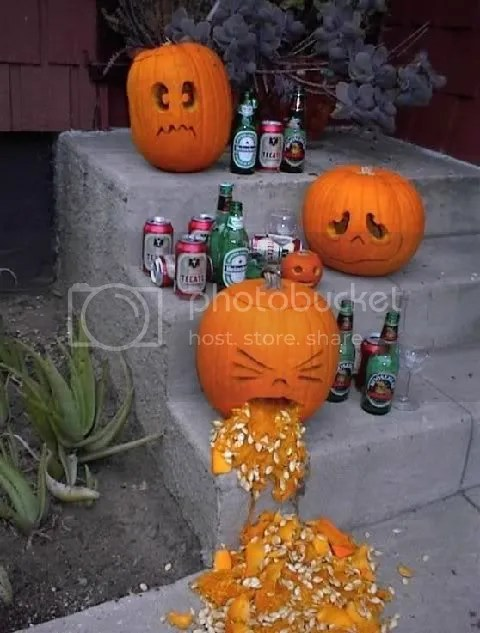 When Pumpkins Drink Pictures, Images and Photos