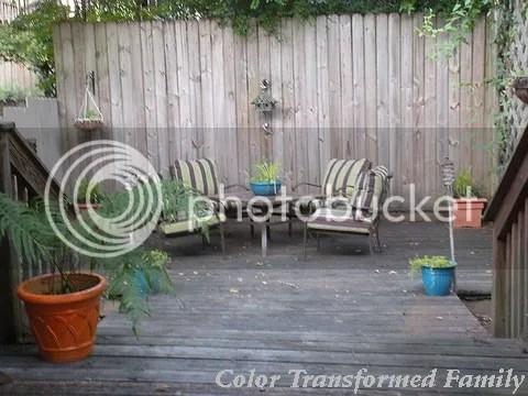 photo backyard.jpg