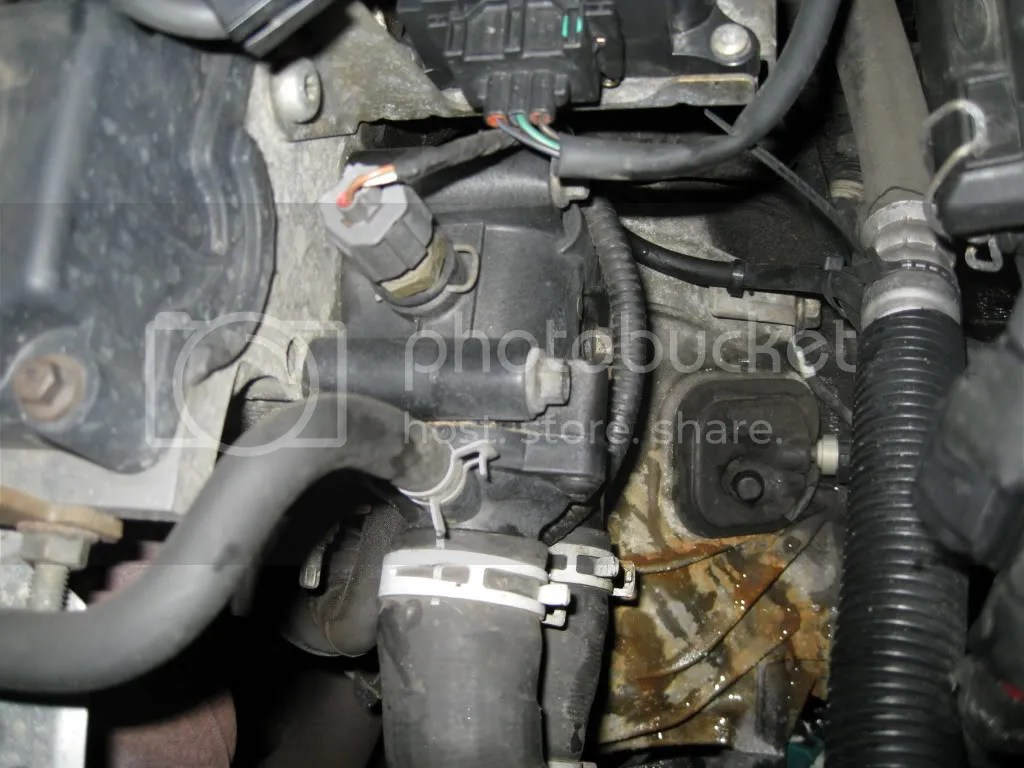 2000 ford focus thermostat diagram domestic switchboard wiring australia free engine