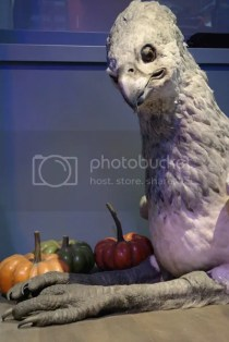 photo Buckbeak.jpg