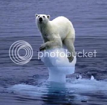 Polar bear sitting atop a vanishing iceberg in an empty sea.