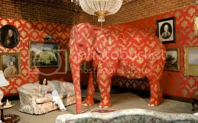 elephant in the room hidden