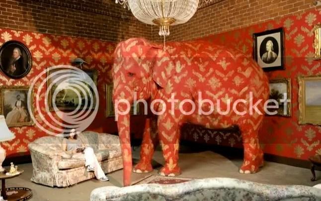 elephant in the room hidden