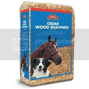 Recommended Bedding For Dogs