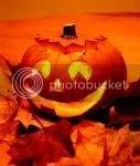 halloween, pumpkin, pumpkins, holiday, holidays