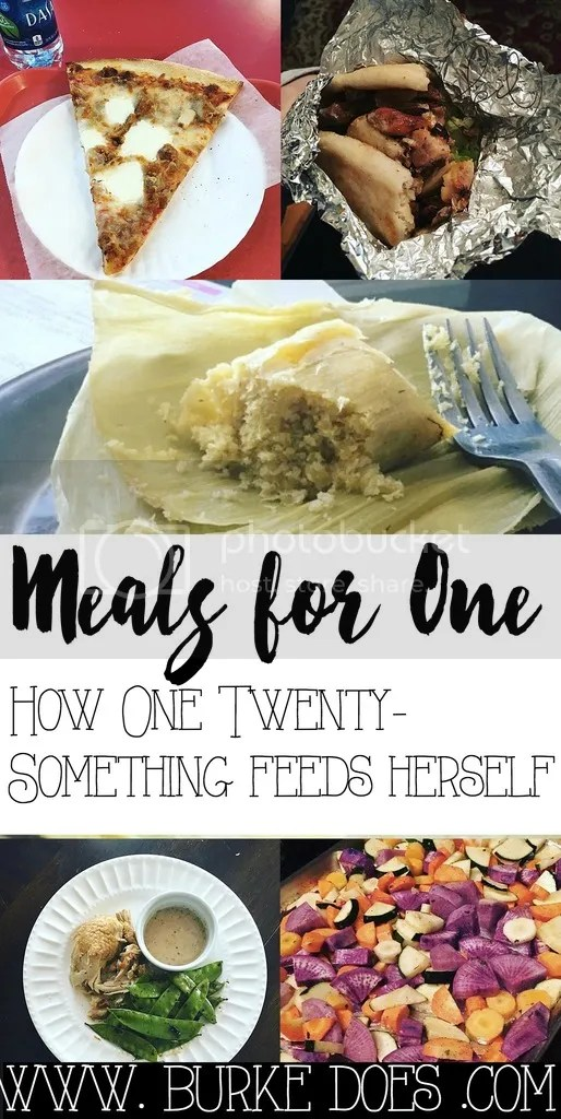 Feeding one person can be hard! With this sample meals for one, you too can brainstorm easy, affordable meals that will make you feel good about the food you're eating.
