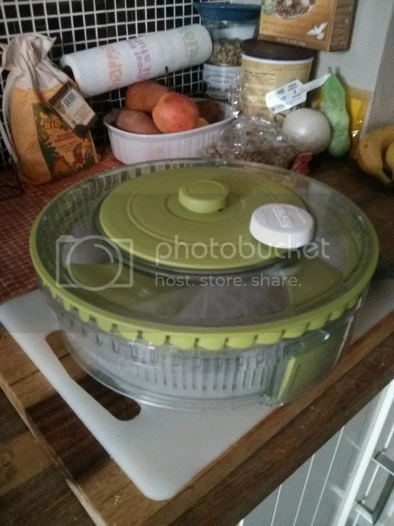 Collapsable salad spinner