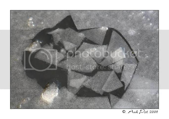 Log6-1-09-7.jpg picture by Knatop