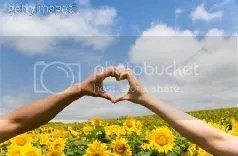 sunflower // hand heart Pictures, Images and Photos