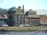 Thumbnail of Tolly Cobbold - Cliff Brewery - tolly-cobbold_01