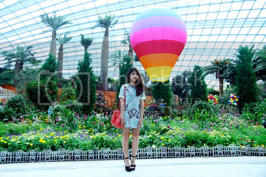 photo IMG_2368.jpg