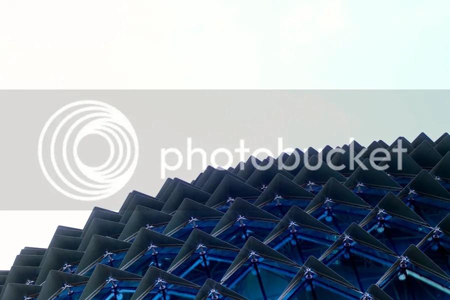photo IMG_3645.jpg