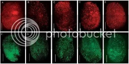 Fingerprint-Neon