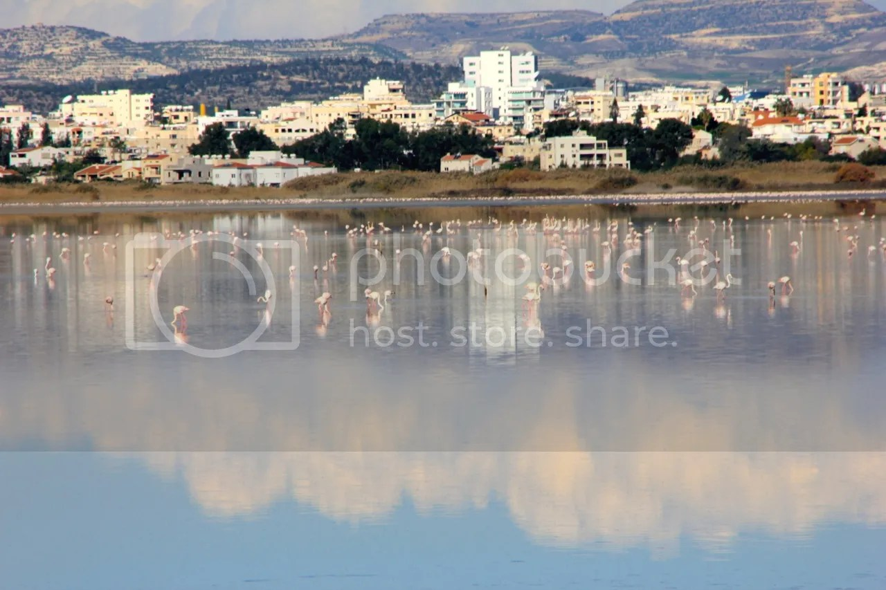 https://i0.wp.com/i181.photobucket.com/albums/x35/jwhite9185/Larnaca/file-153.jpg
