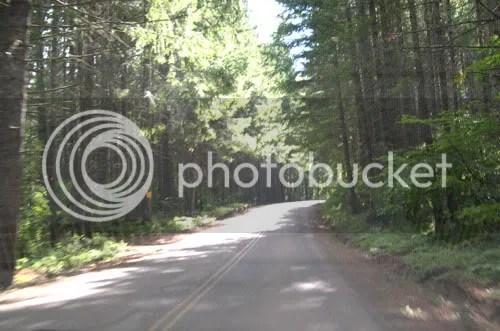 nani forest