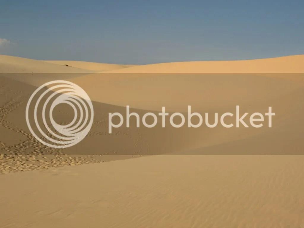 White Dune (05)