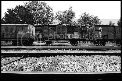 abandoned, belgique, belgium, decay, exploration, photography, urban, urban exploration, urbex, transport, train, trains, freight, passenger, WW2, Aachen, Gare, station, railtrack, tracks, track