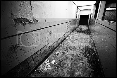 urbex,  urban exploration,  decay,  abandoned,  belgium,  belgique, architecture,  photography,  urban,  exploration, factory, textile, Vetex, industry