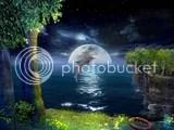 delfin con luna