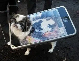 ipod dog costume