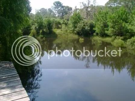 https://i0.wp.com/i187.photobucket.com/albums/x204/chicklady/pond2.jpg